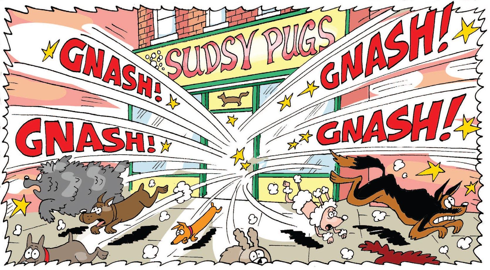 Gnasher trashes the dog salon