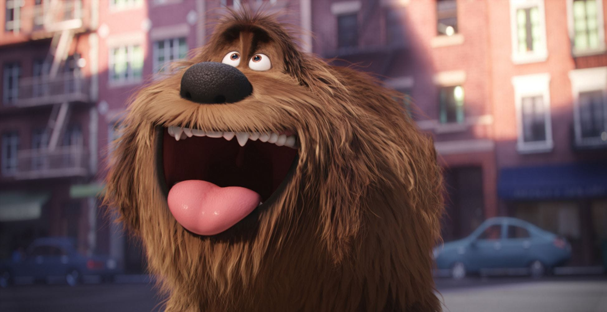 Duke from The Secret Life of Pets