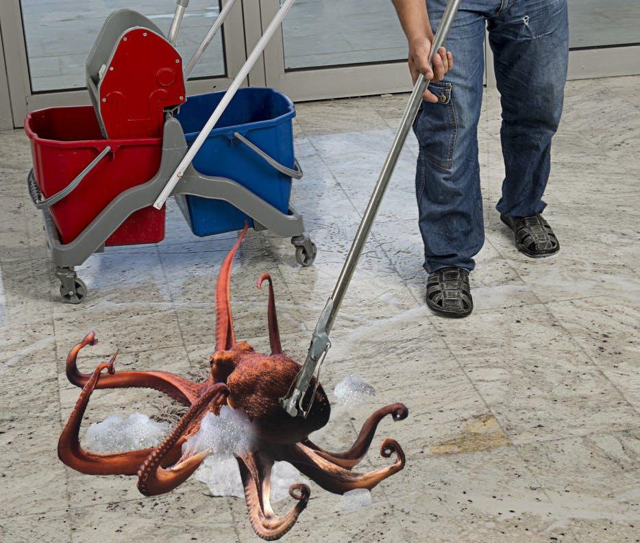 mop octopus