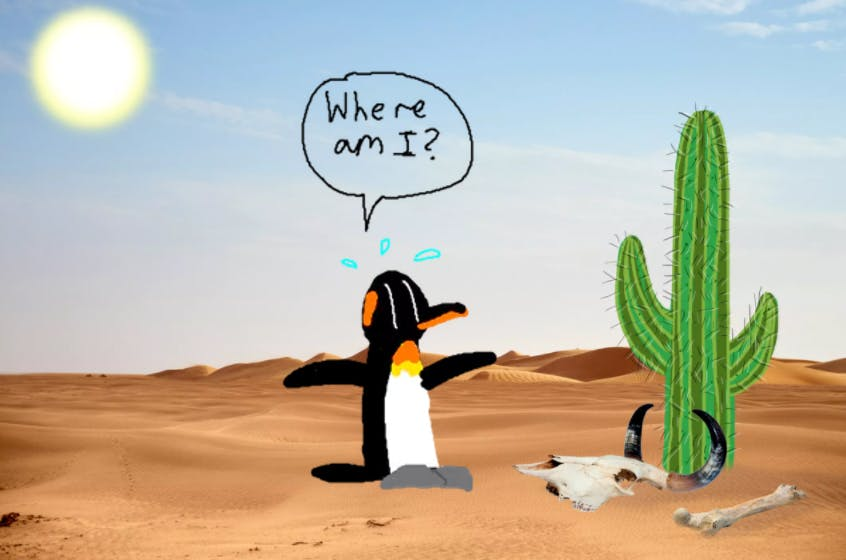 "A lost penguin in the desert asking ""where am I?"""