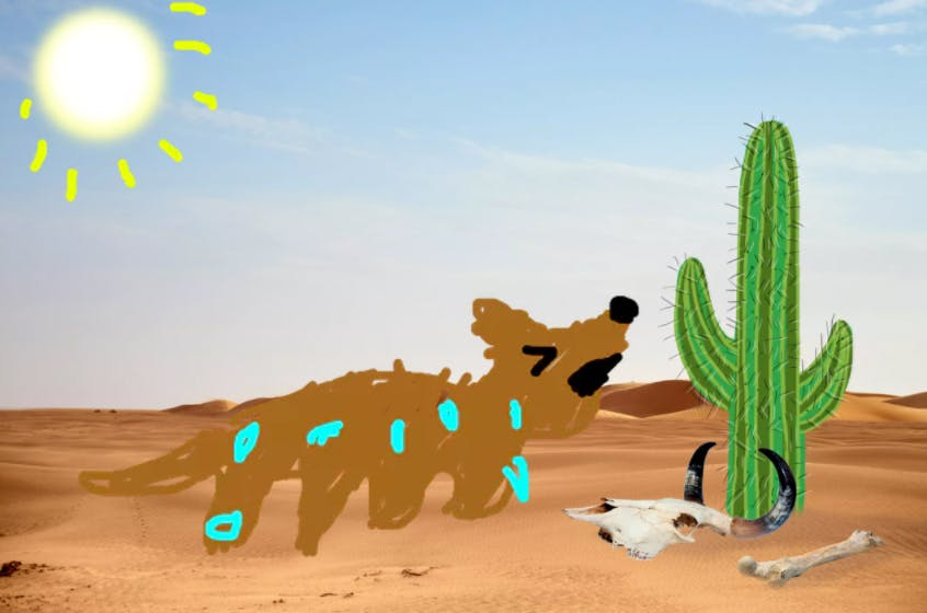 A sweaty dog who is hot in the desert