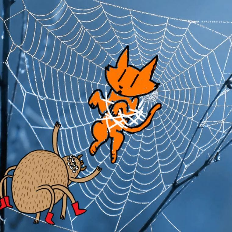 Cat in a spider web