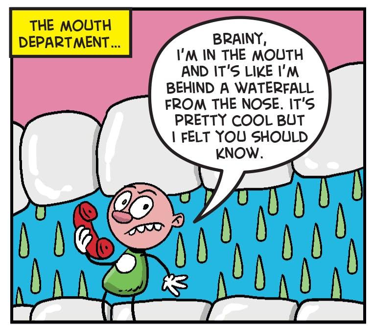 numskull snot cruncher