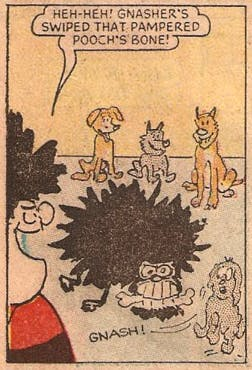 The first time Gnasher appeared in Beano