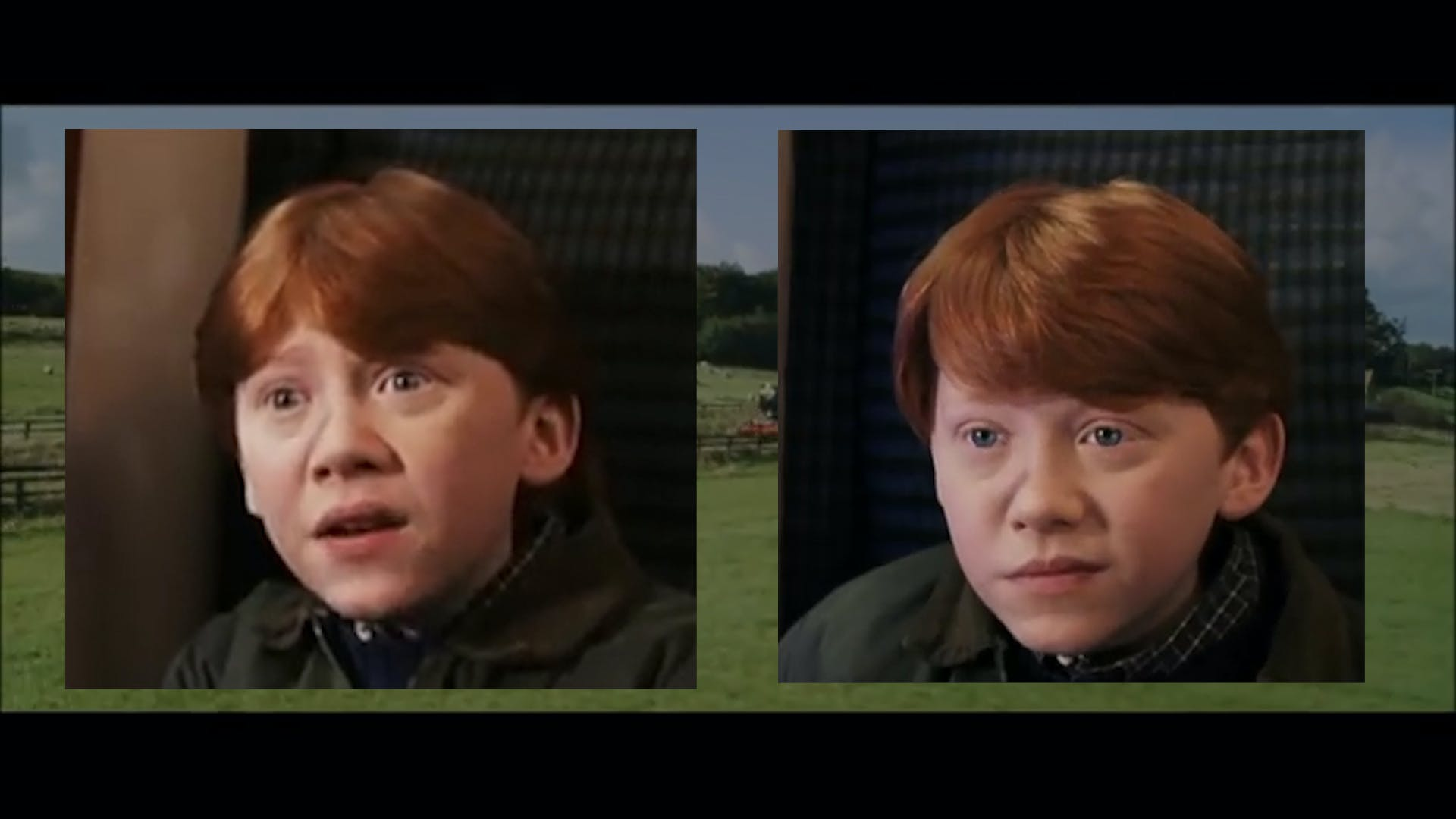 Harry Potter Ron's Parting