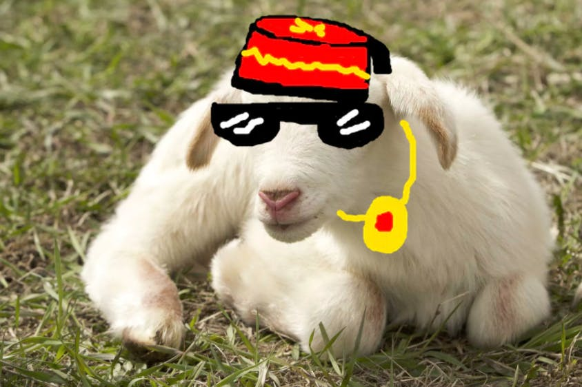 Sheep wearing a fez and sunglasses