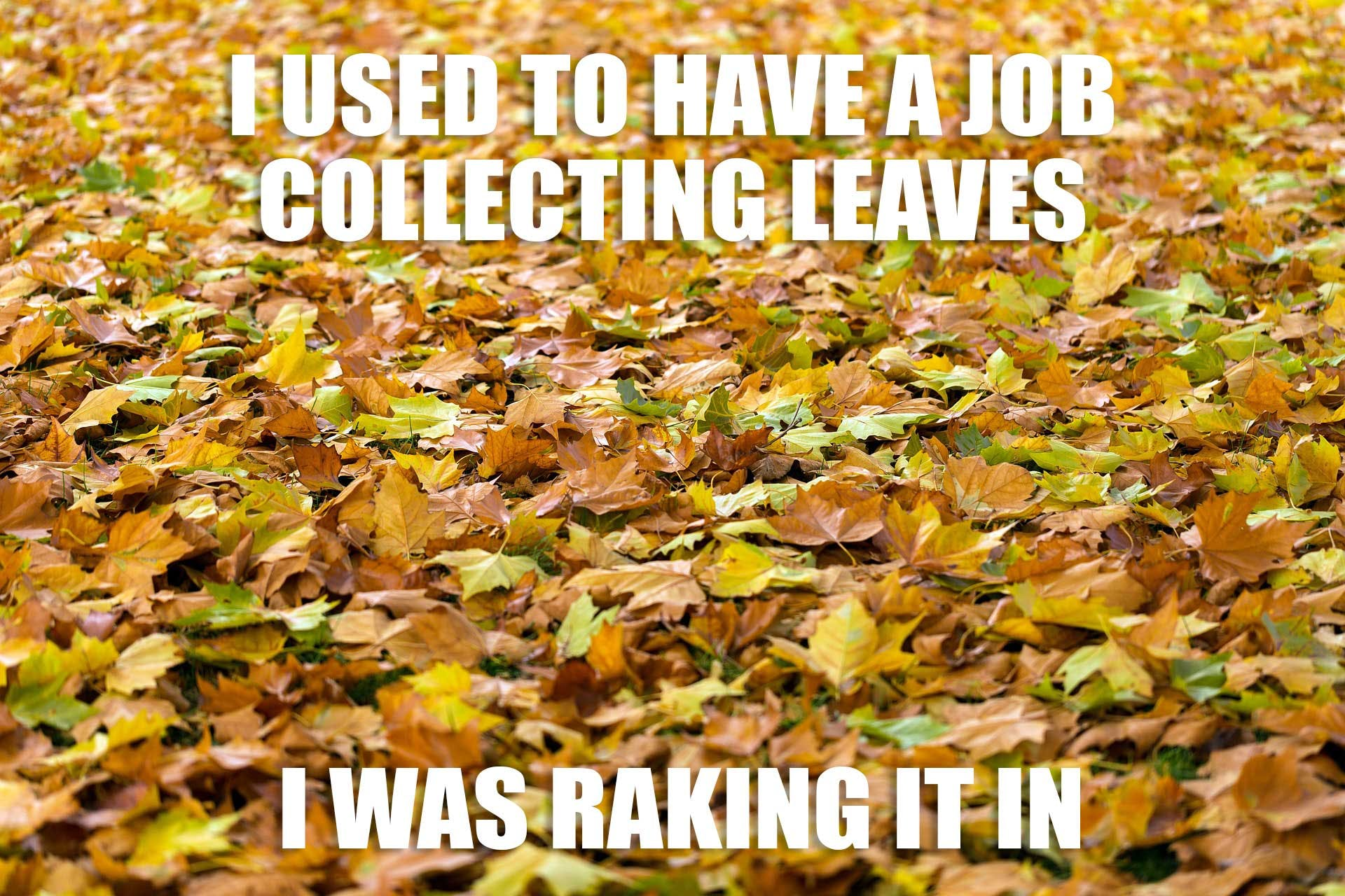 I used to have a job collecting leaves...