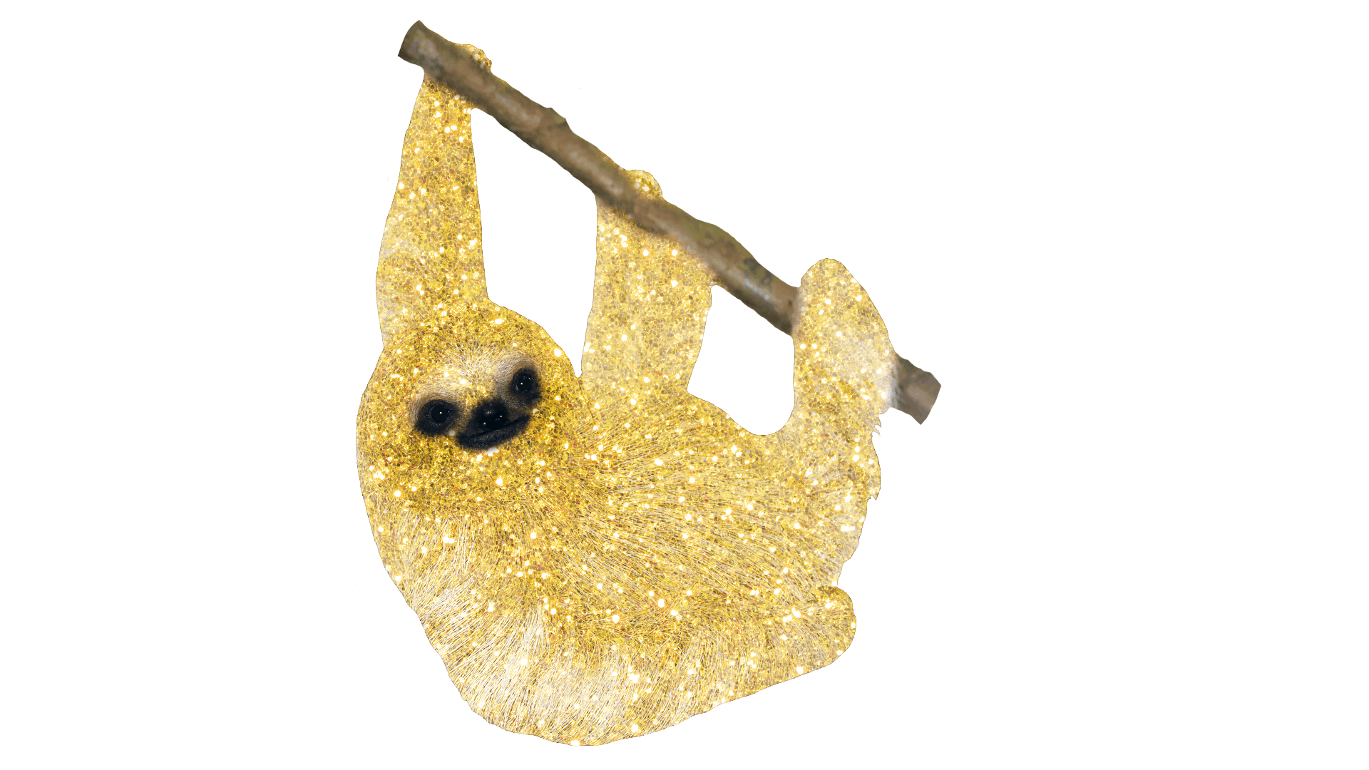 sloth covered in glitter