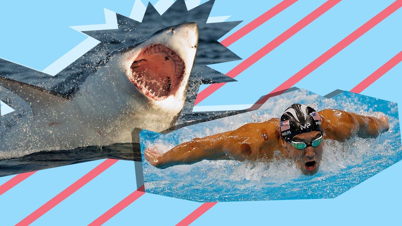 Michael Phelps and a shark yo