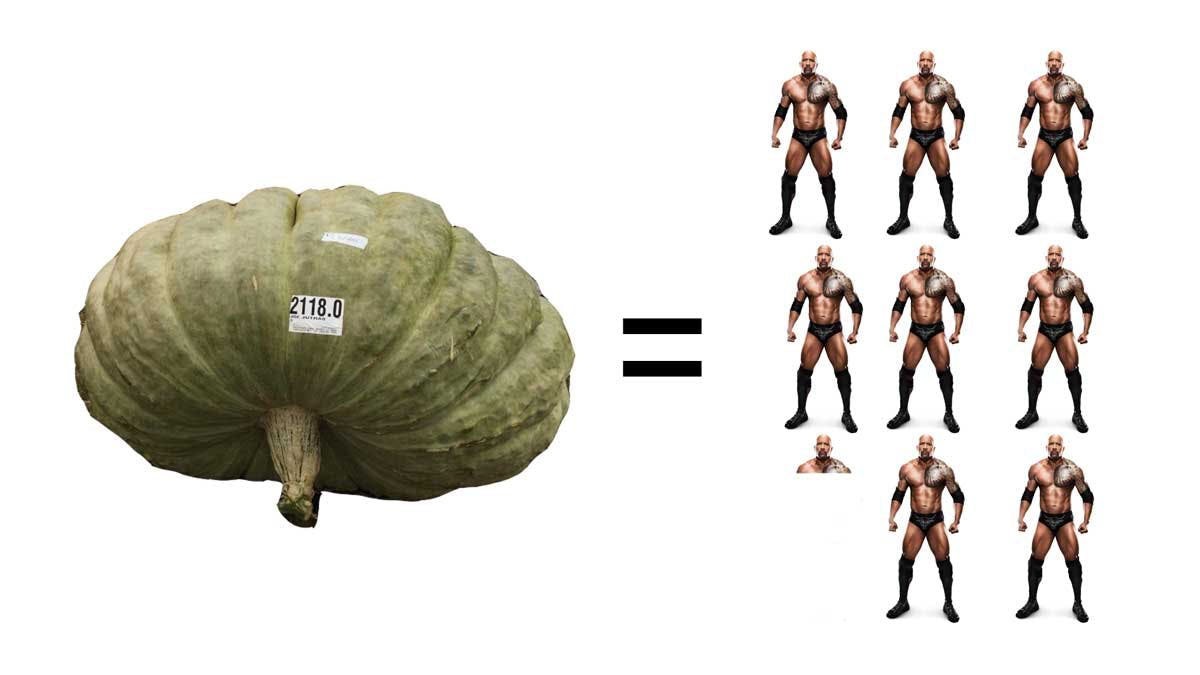 "DWAYNE ""THE SQUASH"" JOHNSON"