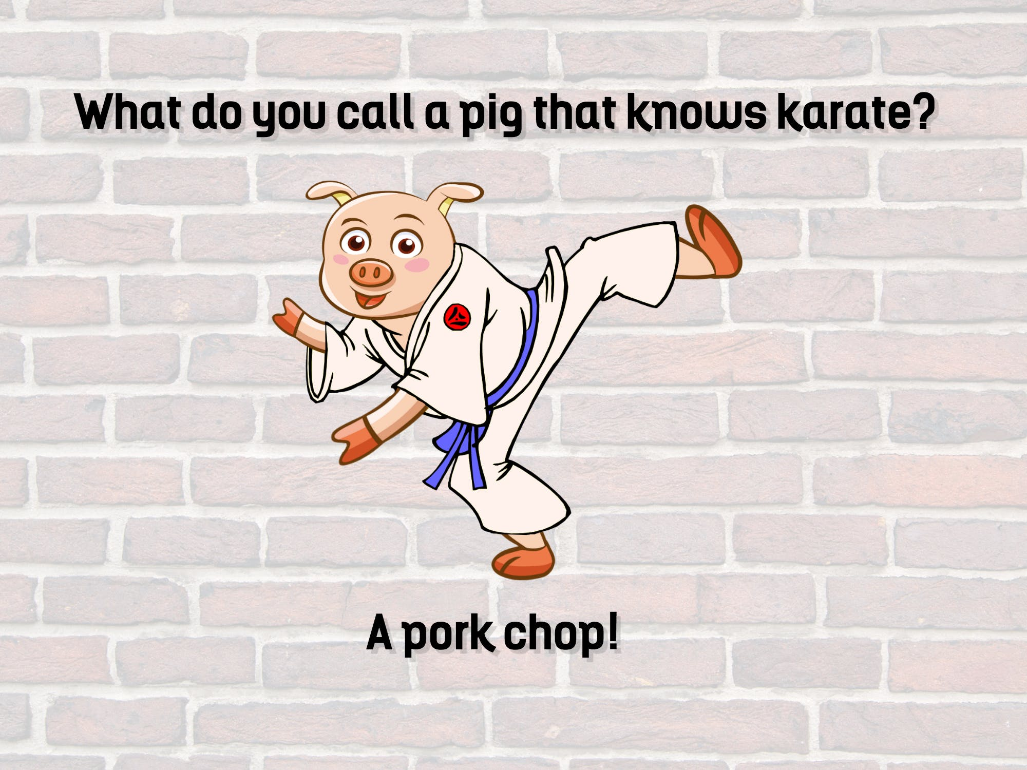 This is a pig who is a keen fan of karate