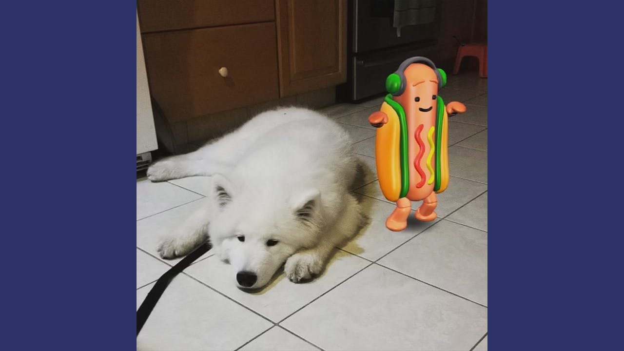 Snapchat hot dog with a sleepy pup
