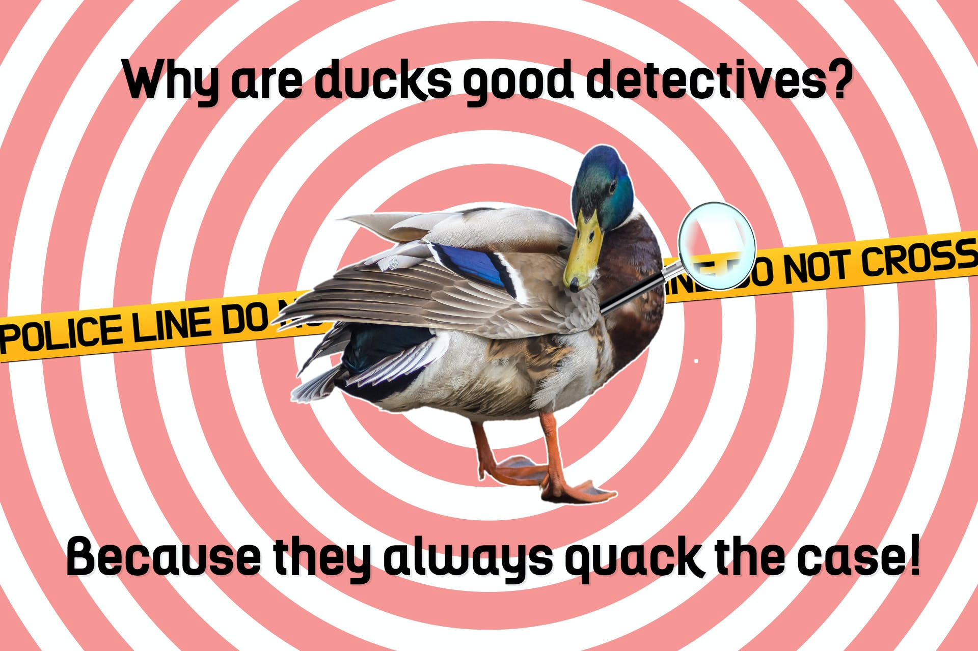This is a cartoon of a duck with a magnifying glass