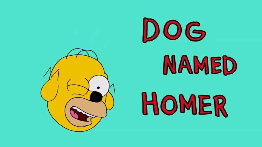 Dog named Homer