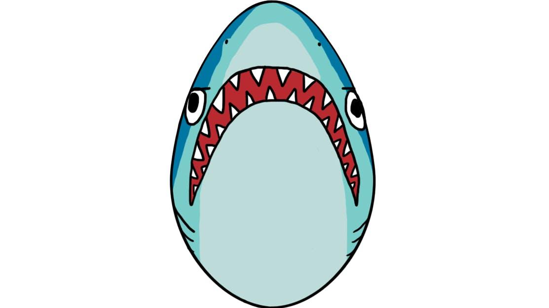 Shark egg
