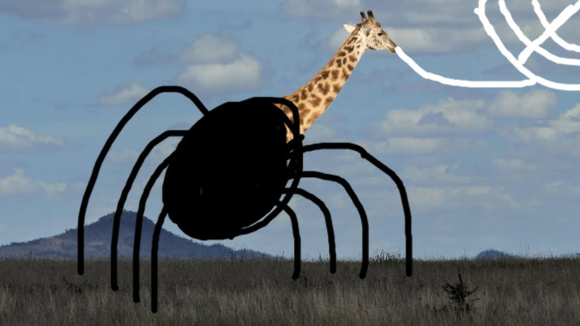 Giraffe with a spider body