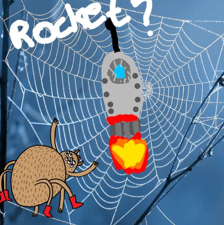 Rocket stuck in a spiders web - Complete the Drawing