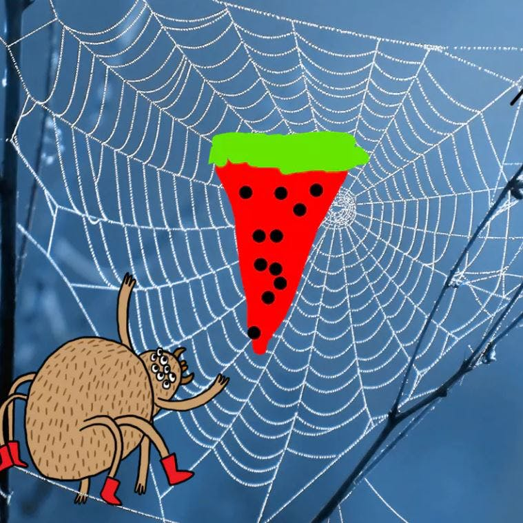 Watermelon in a spiders web - Complete the Drawing