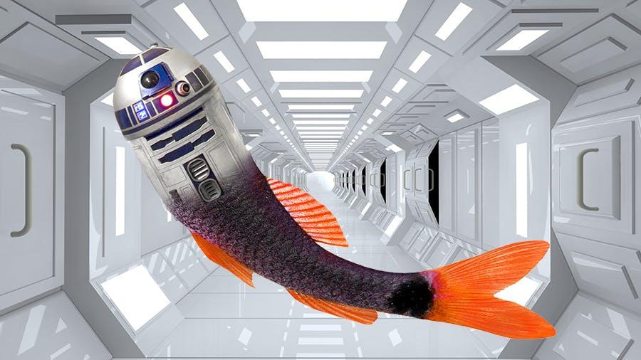 R2-D2 as a mermaid